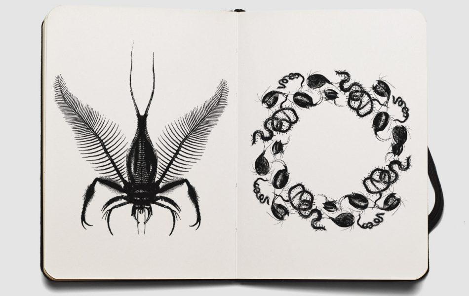 illustration_dyodyo_asema